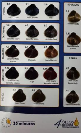 Coloração Poderosacor 6.1 Louro Escuro Acinzentado (Grátis OX)